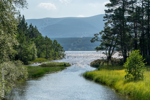 Loch Morlich near Aviemore Canvas Print