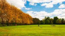Green Park In Spring, Cambridge, England
