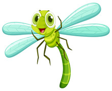 Dragonfly With Happy Face