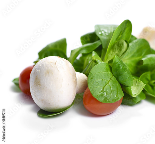 Fresh Garden Salad With White Mushrooms Cherry Tomatoes And