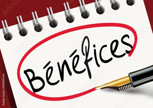 Bénéfices - Bilan - 109599344