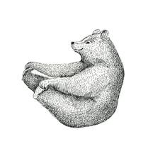 Hand Drawn  Illustration Of Fu...