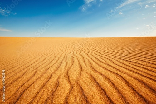 Photo sur Toile Desert de sable Dune of the sand