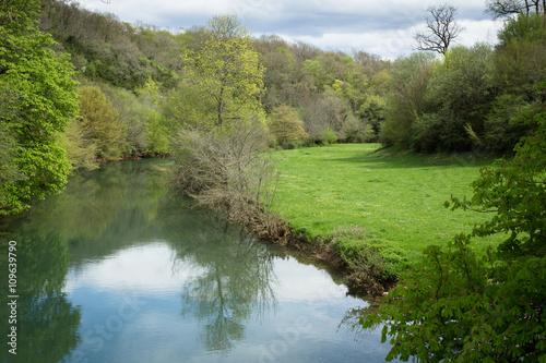 Staande foto Rivier une rivière verte et calme dans la campagne