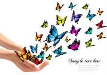 Hands Releasing Colorful Butterflies. Vector Illustration