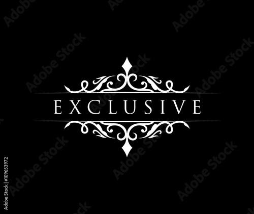 Fotografie, Obraz  Exclusive logo