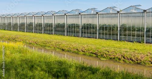 Fotografía Modern glasshouse in the Netherlands