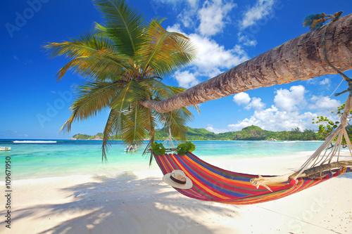 Fotografiet Sommer am Strand, Hängematte an einer Palme, Seychellen