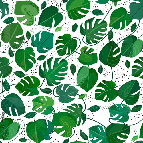 Materiał do szycia Monstera leafs wzór. Illusration tropikalny wektor