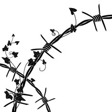 Ivy With Barbed Wire