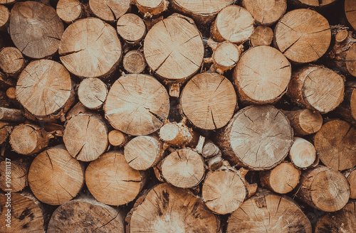 Poster de jardin Texture de bois de chauffage Запас дров для каминного отопления коттеджа