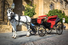 Traditional Horse And Cart At ...