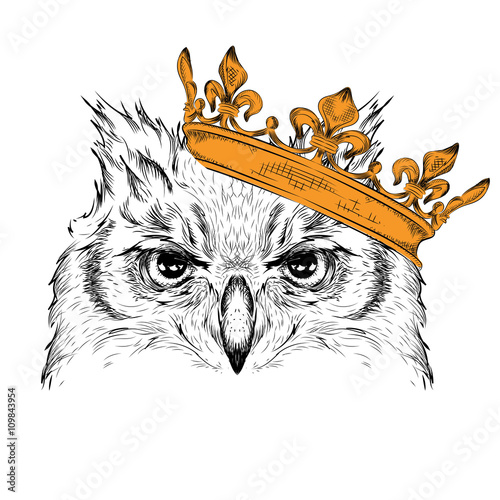 Photo sur Toile Croquis dessinés à la main des animaux Hand draw Image Portrait owl in the crown. African / indian / totem / tattoo design. Use for print, posters, t-shirts. Hand draw vector illustration
