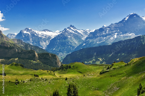 Poster Alpes Beautiful idyllic Alps landscape with mountains in summer, Switzerland