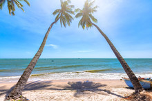 Beachside Coconut Sunny Summer Day At Shore Phan Thiet With Gentle But Feels Peaceful, Fun For The Weekend In Binh Thuan, Vietnam