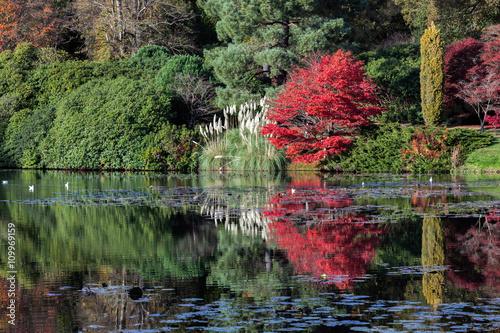 Foto op Canvas Khaki Sheffield Park Gardens