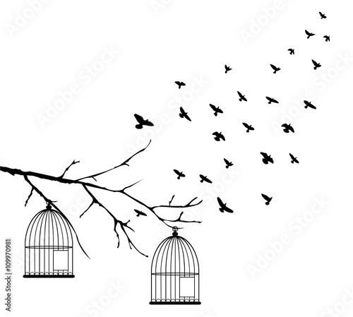 wektorowi-ptaki