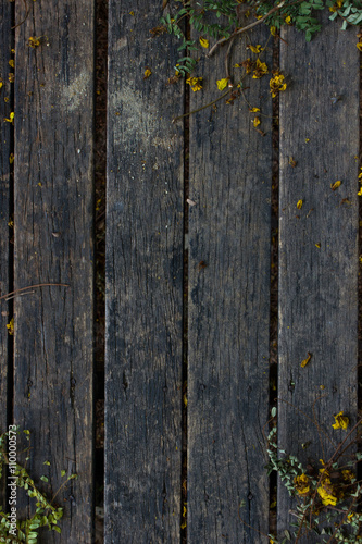 Garden Poster Floral Dirty old wood background