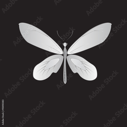 Canvas Print metal butterfly, Vector illustration.