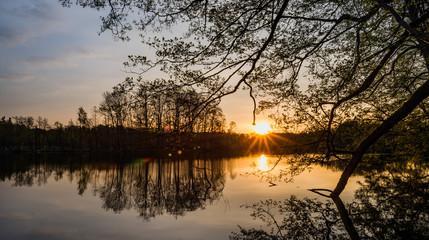 Sonnenaufgang in Chorin