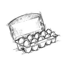 Hand Drawn Illustration - Box Of Eggs On White Background. Sketc