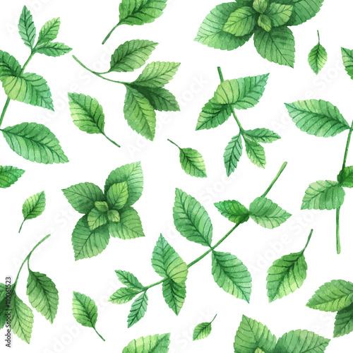 Akwarela wektor wzór ręcznie rysowane zioła mięty.