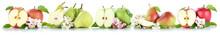 Apfel Und Birne Collage Äpfel Birnen Frucht Früchte Obst In Ei