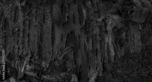 Foto op Plexiglas Brandhout textuur Burnt Wood Texture. Dark Abstract Wooden Background. A Tree Stum