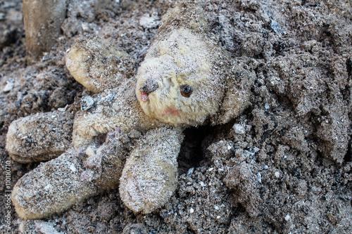Fotografía  Oso de peluche yace herido en un montón de cenizas