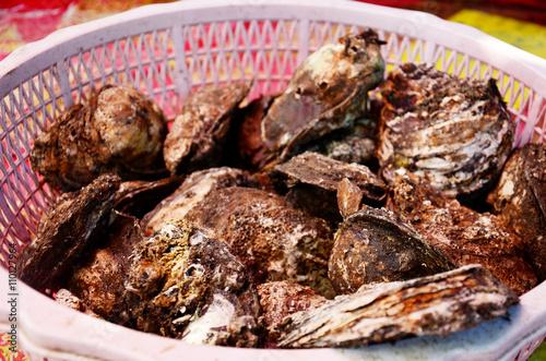Fototapeta oyster for sale obraz na płótnie