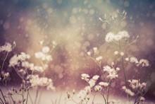 Fresh Flowers And Blossom Tre...