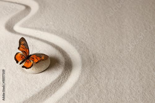 Foto op Plexiglas Stenen in het Zand Zen butterfly