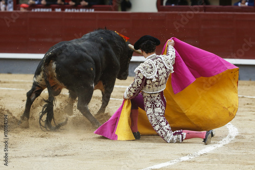 La pose en embrasure Corrida bull in the bullring
