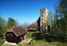 Ruin Of Castle Ryzmberk