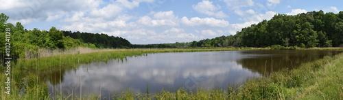 Fotografie, Obraz  Pond in Mississippi in May