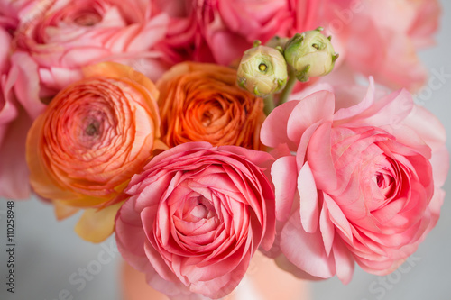 Fotografia, Obraz  bunch of pale pink ranunculus persian buttercup  light background, wooden surface