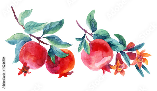 Watercolor pomegranate bloom branches set