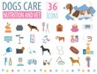 Dog icon set. Heatlh care, vet, nutrition, exhibition
