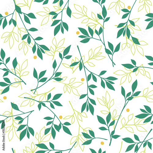 Foto  植物のパターン