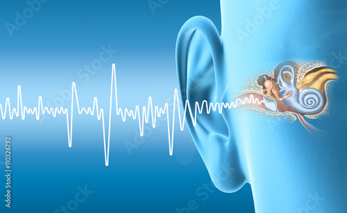 Photo  Human ear anatomy with sound wave, medically accurate 3D illustration