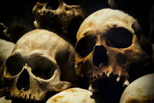 Skulls Of Victims Of The Khmer Rouge At The Killing Fields Of Choeung Ek In Phnom Penh, Cambodia.