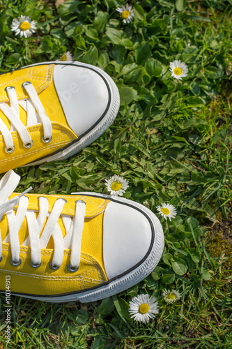 Yellow sneakers in a dasiy field