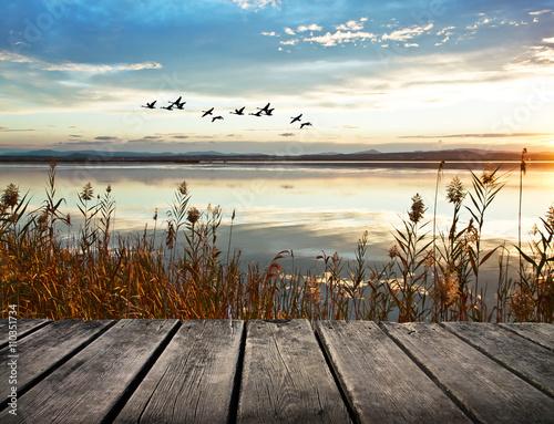paisaje natural desde la orilla de un lago