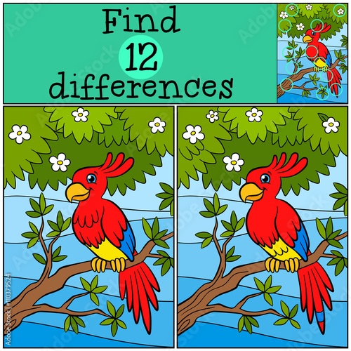 Poster Parrot Children games: Find differences. Little cute parrot sits on the