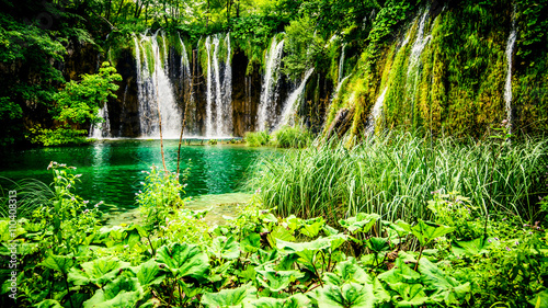 Photo Stands Lime green view of beautiful waterfall in the forest