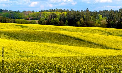 Montage in der Fensternische Orange Beautiful summer rural landscape