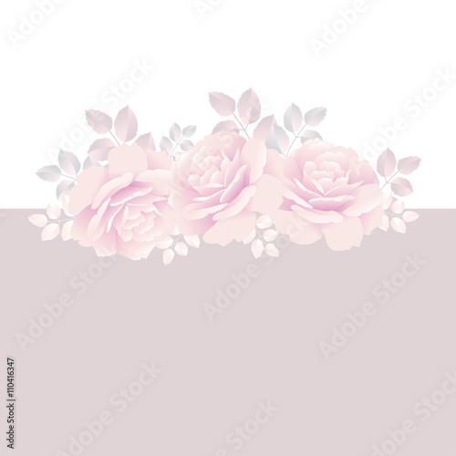 Fotografia, Obraz  pale rose boquete  vector illustration