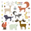 Forest animals set in flat style. Wolf, fox, raccoon, owl, deer, bear, squirrel,moose, hare isolated on white. Vector Illustration
