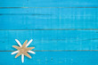 Two starfish on blank teal blue wood sign