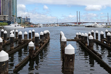 Wooden Poles At The Melbourne Docklands In Melbourne, Victoria Harbour In Australia With The View Of Bolte Bridge In The Background